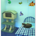 Luxury Ocean Fish Cat Suite